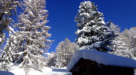 "Mountain-Guide-Switzerland-SaasFee"""